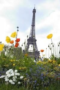Paris Tour eiffel ecolo