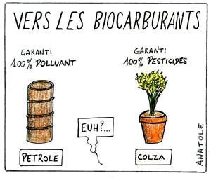 Agrocarburants = Bilan Ecologique médiocre